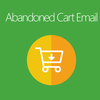 Abandonment Cart Email